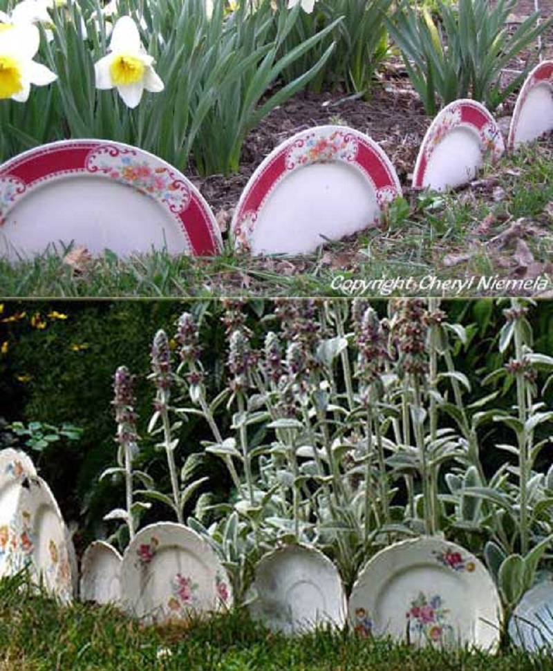 Old china plates garden
