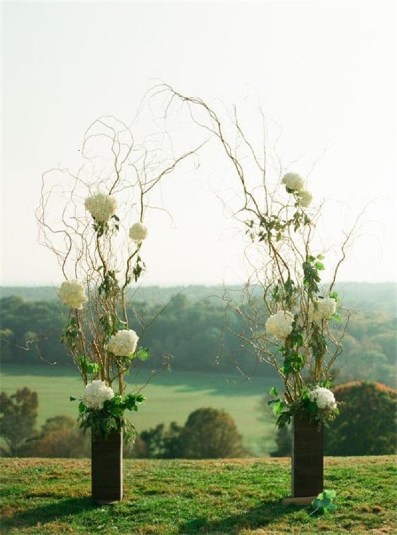 Branch and hydrangea wedding arch